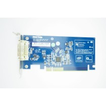 HP DVI Video Adapter Low Profile PCIe x16